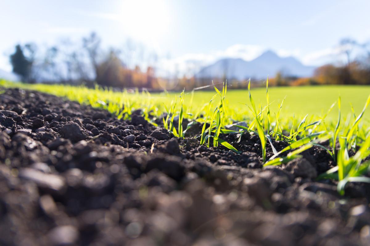 有機肥料の製造・販売